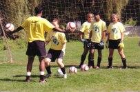 mus-vogsngr-ball-juggl_fs